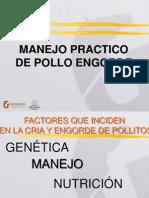 36601295 Manejo Pollo y Ponedoras