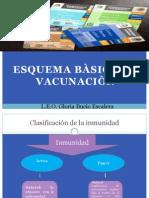 ESQUEMA BASICO DE VACUNACIÒN