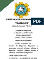 EMPRESA DE SEGURIDAD PRIVADA.docx