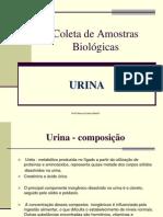 - Coleta urina1