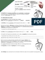 Activite3 Dissection Coeur