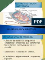 Nutricón bacteriana