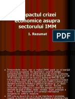 Impactul+Crizei+Economice+Asupra+Sectorului+IMM