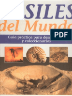 Fósiles del Mundo