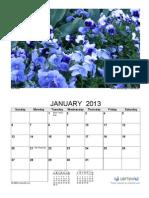 2013 Photo Calendar Flowers