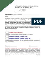 FORMULAR Optiune Practica 2013