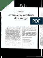 los canales de la circulación de la energía (qi)
