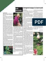 Amenagement Ecologique Dun Bassin Du Jardin