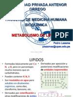 Metabolismo de Lipidos1