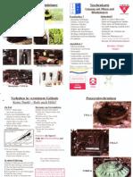 Taschenkarte Umgang mit Minen und Blindgängern (SFOR)