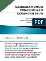 Gambaran Umum BLUD