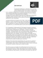 Causas y Consecuencias Deforestacion