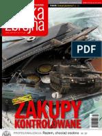 Polska Zbrojna Nr 242008