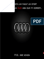 Audi Sorin