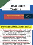 Citotoxicidad Mediada Por Celulas
