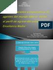 Presentación investigación representaciones