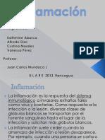 Inflamacion 2013 (2)