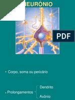 Aula_01_-__Neurônio_e_eletrofisiologia