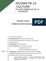 SOCIOLOGÍA DE LA CULTURA HUM IV