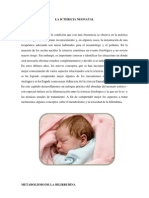 La Ictericia Neonatal