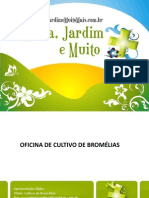 Apostila-Bromélias