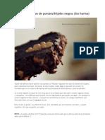 Brownies Veganos de Porotos