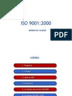 Normade Calidad ISO 9000, Estructura