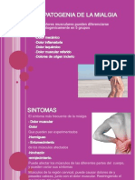 Fisiopatogenia de La Mialgia