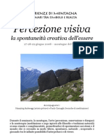 Percezione_visiva_2008