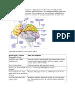 efek stroke pada otak