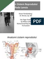 Gangguan Sistem Reproduksi Pada Lansia, Gabungan