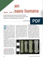 El Origen de La Mano Humana Inv. y Ciencia 2005