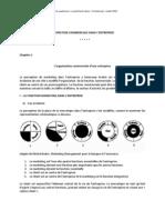 Gestion Et Organisation Du CommerceT3