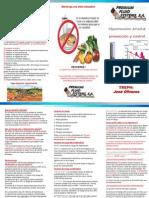 Hipertensión Prevención y Control