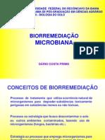 Birremediação Microbiana