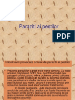 Paraziti ai pestilor