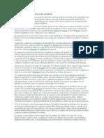 Criterios de distinción entre acción y omisión.doc