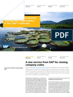 Creating New Organizations in Your SAP Landscape (en)
