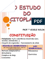 o Estudo Do Citoplasma