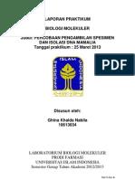Formulir Laporan praktikum 2013