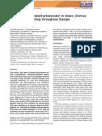 Vancomycin-resistant enterococci