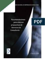 Recomendaciones para Elaborar Propuestas de Servicios de Consultoría CNEC 2010