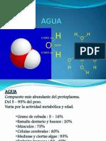 Agua Acidos y Bases