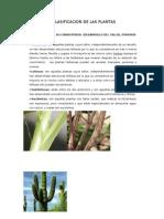 CLASIFICACIÓN DE LAS PLANTAS SEGUN CONSISTENCIA - i