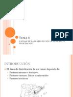 Tema 6 Causas de La Distribucion
