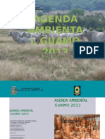 Agenda Ambiental Guamo 2013