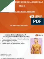 Clase 20 Sistema Endocrino IV