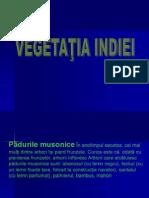 didacticiia