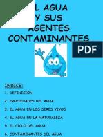 El Agua y Sus Agentes Contaminantes