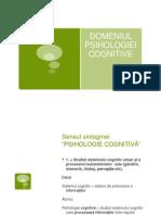 curs introductiv psihologie cognitiv-ª+ó